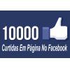 10 Mil Curtidas Universais Em Página No Facebook