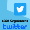 1000 Seguidores Twitter Followers